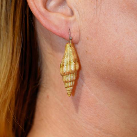 Ohrringe aus echten Muscheln. - 5