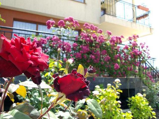 Family hotel in Sozopol-Bulgaria - 4