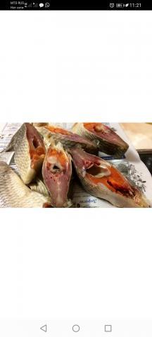 Рыба по Хантейскому рецепту - 1