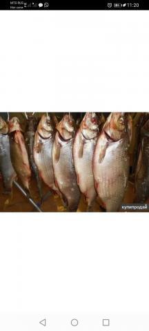 Рыба по Хантейскому рецепту - 3