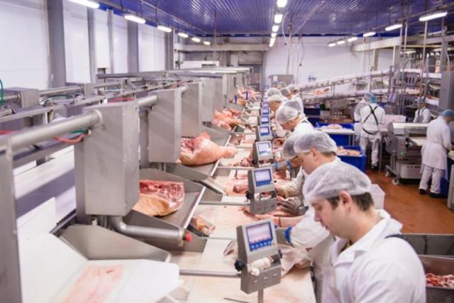 Работник в отделе разбора мяса, Sokołów. - 1