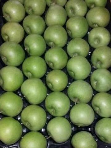 Предлагаю К ПРОДАЖЕ  все виды сезонных фруктов и овощей - 1
