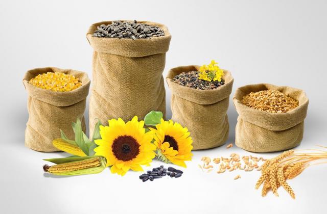 Vete och mjöl, sojabönor, korn, solrosfrön, majs - 1