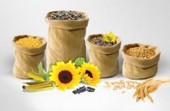 Vete och mjöl, sojabönor, korn, solrosfrön, majs