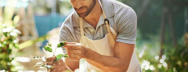 Ищу работу садовника в ЕС - 1