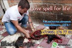 Приворот на любовь в берлине германия. Маг и магические услуги в германии
