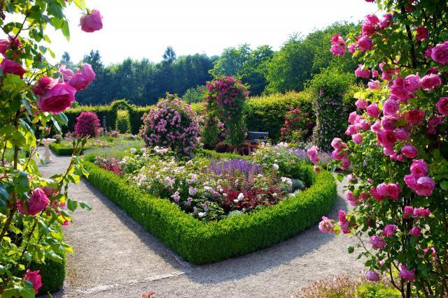 Ищу работу садовника в Испании - 1