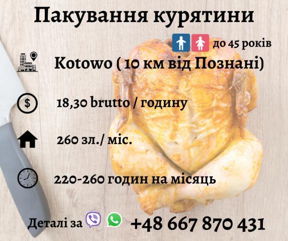 Пакування курятини - 1