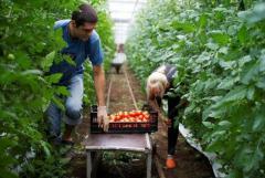 требуются садовод /агроном  в  Хорватии