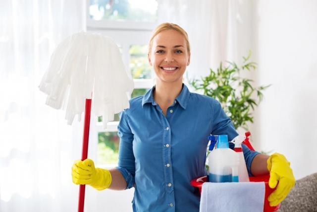 Требуется горничная для уборки апартаментов в Чехии - 1