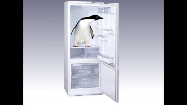 Окажу услуги по ремонту холодильников,морозилок в Венгрии - 1