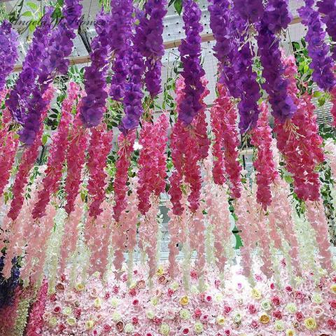 Продам 7 цветов Элегантный цветок Вистерия в Дании - 2