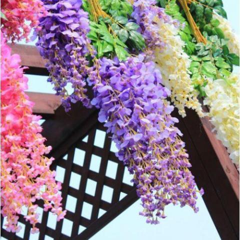 Продам 7 цветов Элегантный цветок Вистерия в Дании - 3
