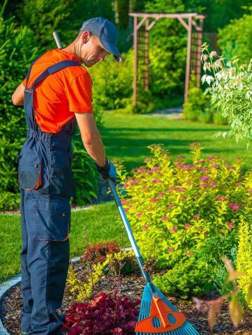 Ищу работу Садовника во Франции - 1