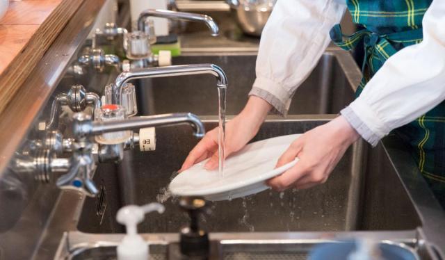 Требуется посудомойщица в Болгарии - 1