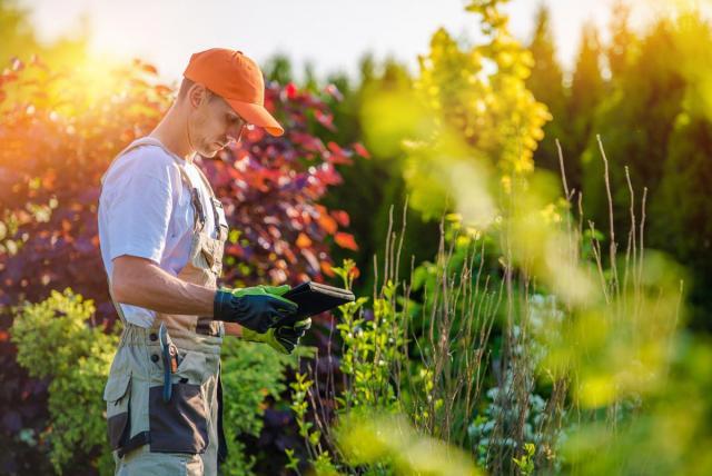 Требуется профессиональный садовник - 1