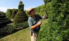 Предлагаю работу садоводом
