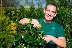 Требуются садовники и Handyman