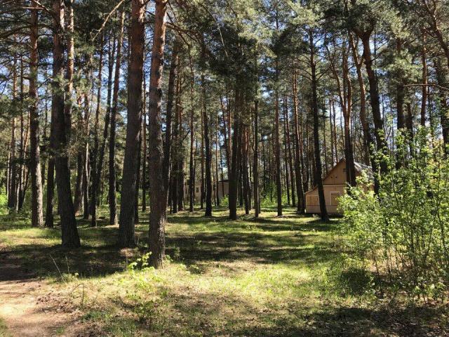 Продам бывший пионерский лагерь - 1