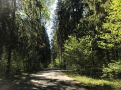 Продам бывший пионерский лагерь - Изображение 2