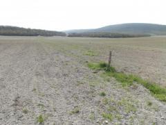 Продается земельный участок СНТ - Изображение 3