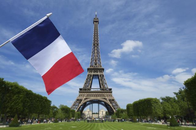 Окажу услуги и предлагаю индивидуальные онлайн уроки французского языка - 1