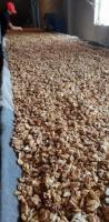 Продам грецкие орехи оптом бабочка половинка - Изображение 1
