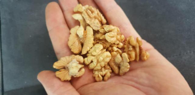 Продам грецкие орехи оптом бабочка половинка - 2