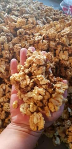Продам грецкие орехи оптом бабочка половинка - 3