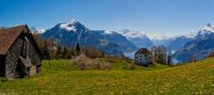 Няня в немецкой Швейцарии с отдельной квартирой