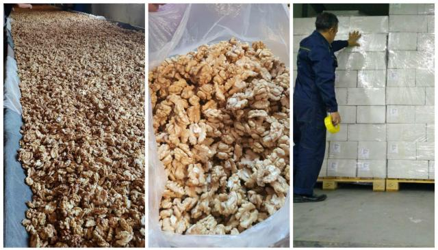 Walnut wholesale, from the forests of southern Kyrgyzstan / Грецкий орех из Киргизии. - 3