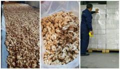 Walnut wholesale, from the forests of southern Kyrgyzstan / Грецкий орех из Киргизии. - Изображение 3