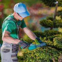 требуется опытный садовник в Данию