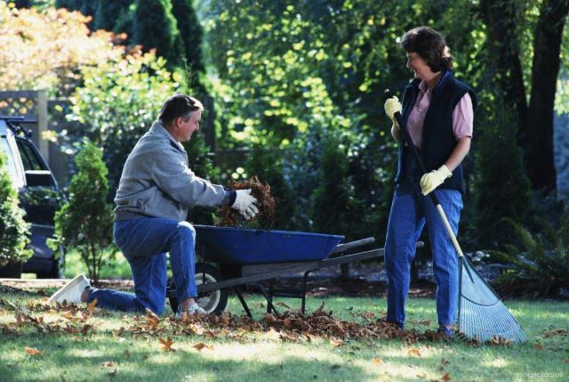 Ищу работу по домашнему хозяйству,уходом за садом,уборкой территории - 1