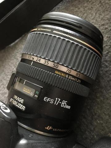 Продам Canon EOS 20D + Canon ultrasonic EFS 17-85mm - 1