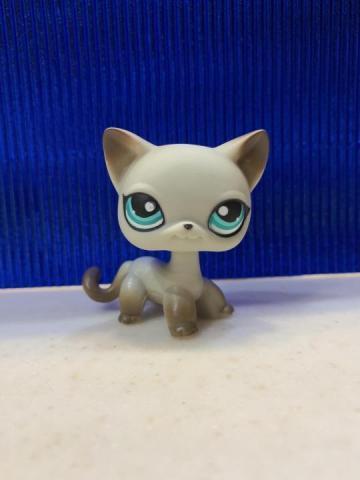 Продам Littlest pet shop египетская кошка - 1