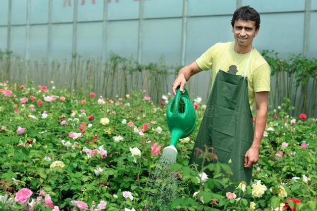 требуется садовник - 1