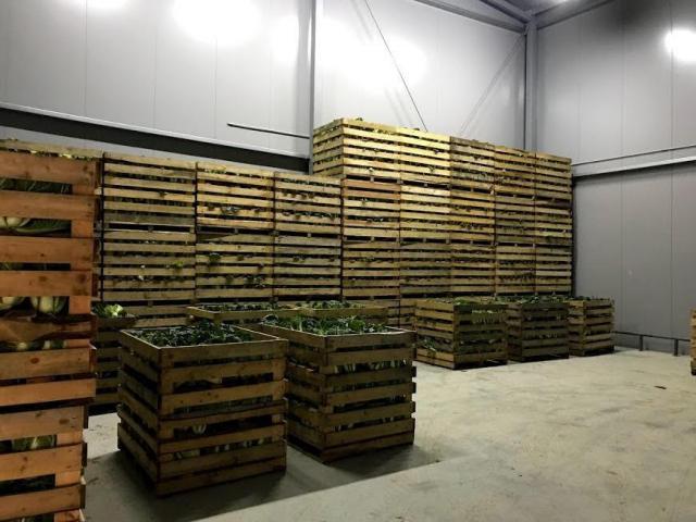 Продается овощехранилище - 4